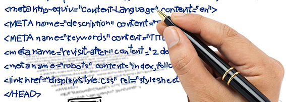Программирование сайтов WordPress